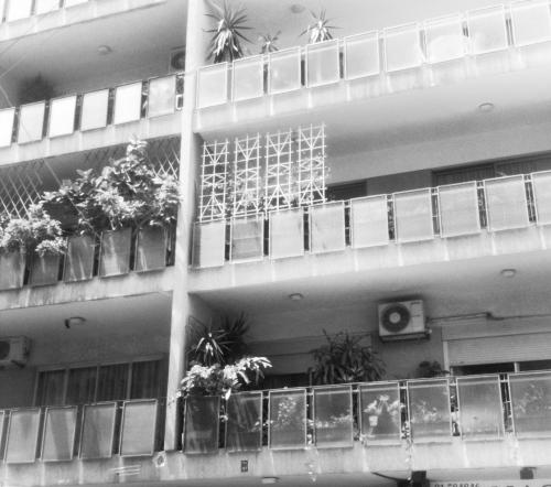 paneled gardens, geitowi