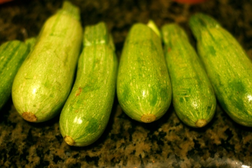 courgettes in a row