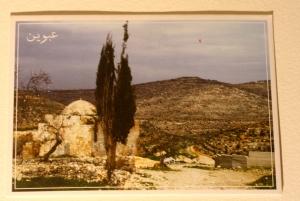 postcard from palestine