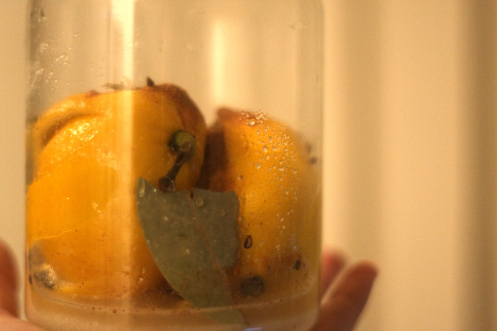 preserve life's lemons and then cook with them
